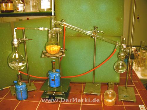 Extraktion von Terpenen durch die Wasserdampfdestillation